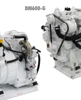 Coelmo-generatori