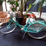 E spunta anche la bici Acqua dell'Elba