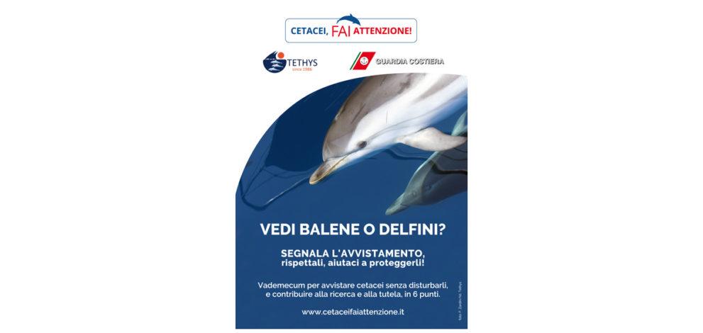Cetacei FAI Attenzione 2.0: il manifesto